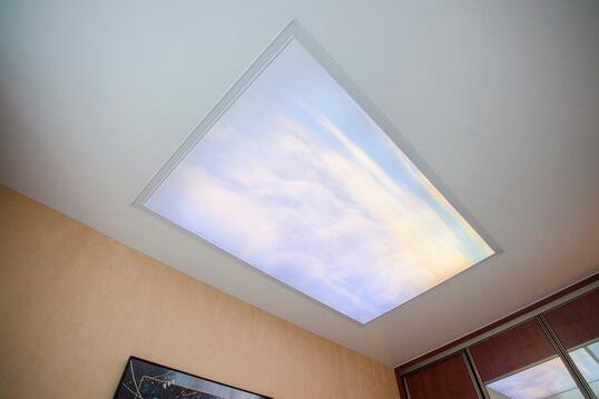 Double vision потолок